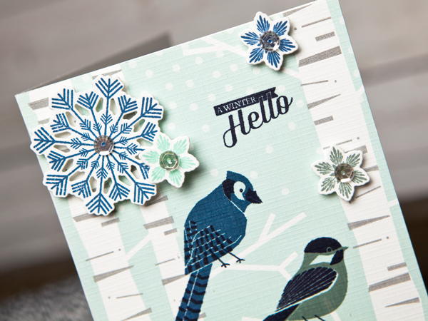 Project by Ashley Cannon Newell for Papertrey Ink - November 2015 - Winter Woods + Fab Flakes - #PaperSource #PapertreyInk #AshleyNewell