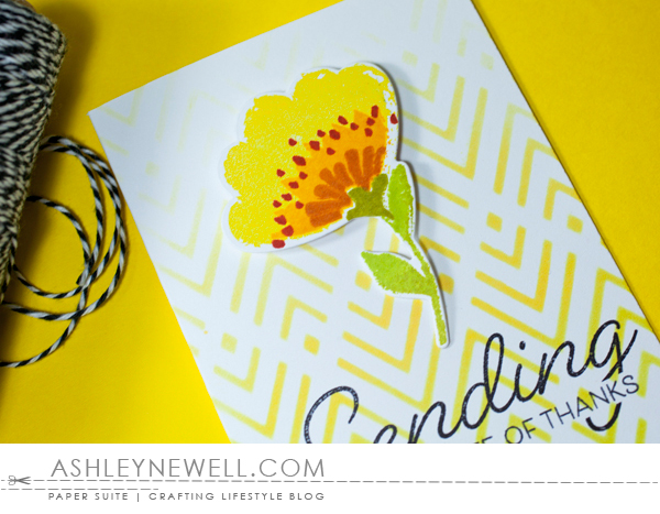 Project by Ashley Cannon Newell for Papertrey Ink - February 2016 - Painted Petals - #AshleyCannonNewell #PaperSuite #PapertreyInk